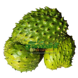 1 Kg Soursop Graviola Fruit Organic Vacum packed